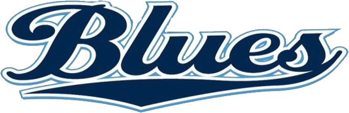brothers in blue logo
